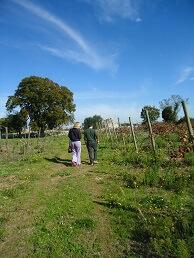 wijnmaker Puglia Primitivo