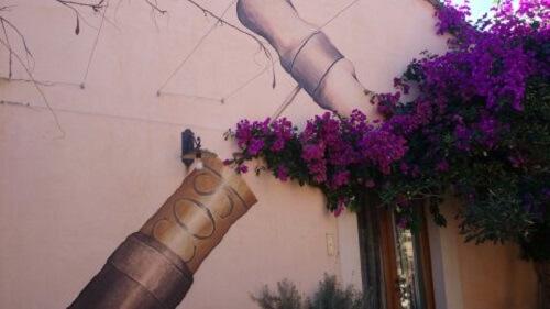 Cos fresco met paarse bloemen
